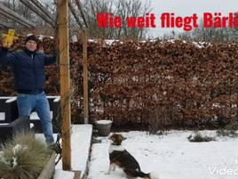 YouTube-Kanal aus Grevenbroich: Einfach Mathe lernen mit Mischlingshündin Frieda