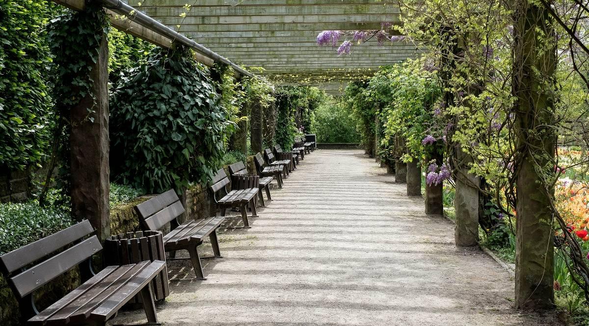 Botanischer Garten Solingen Einnahmen Brechen Weg