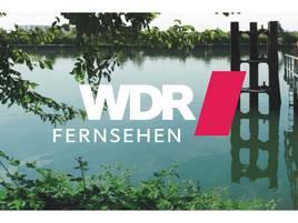 Wasserschaden im Studio: WDR Lokalzeit Duisburg muss umziehen