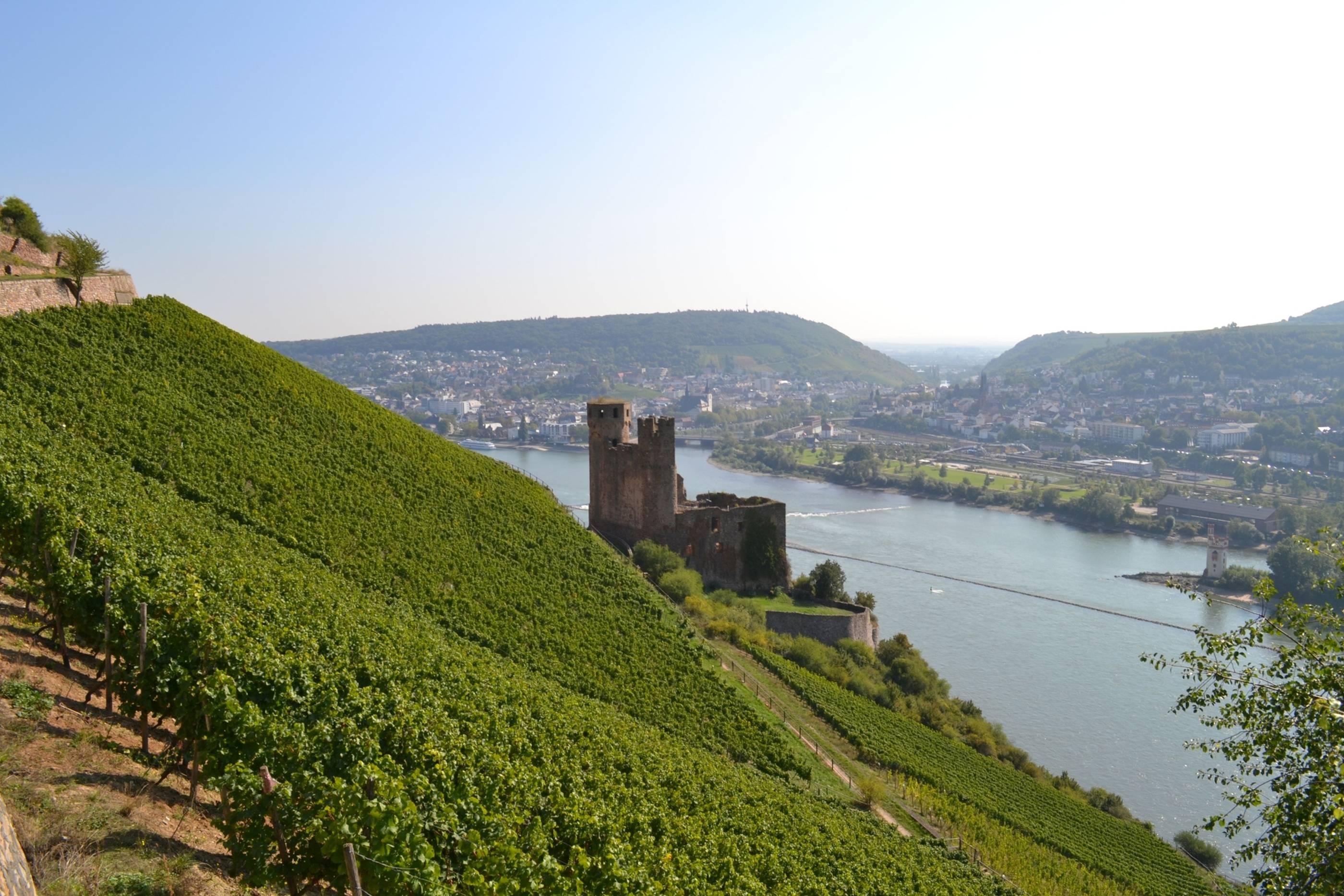 Die schönsten Sehenswürdigkeiten am Rhein