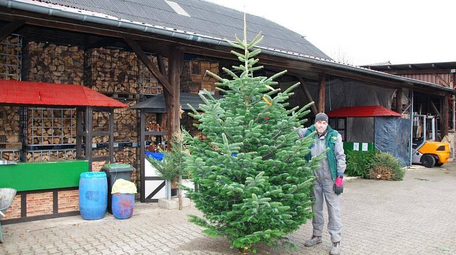 Weihnachtsbaume kaufen viersen