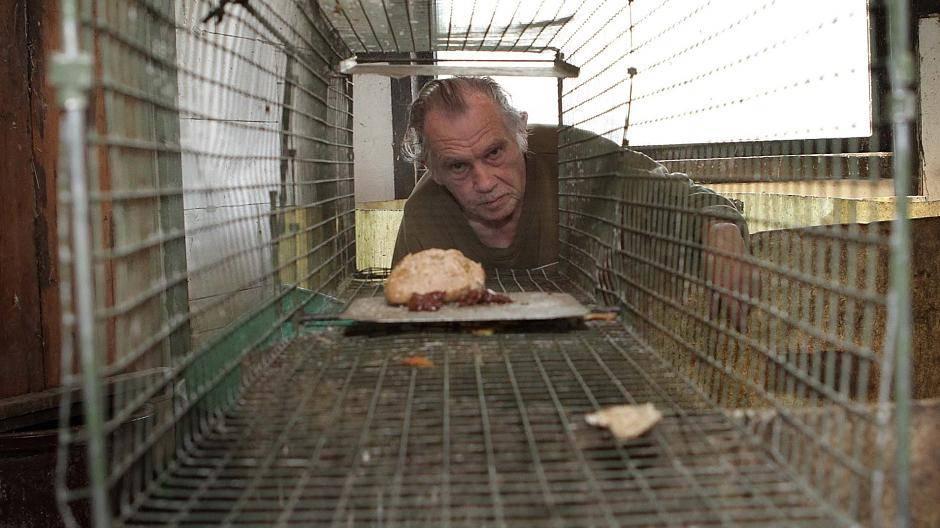 Gruiten: Auf der Jagd nach dem Waschbär