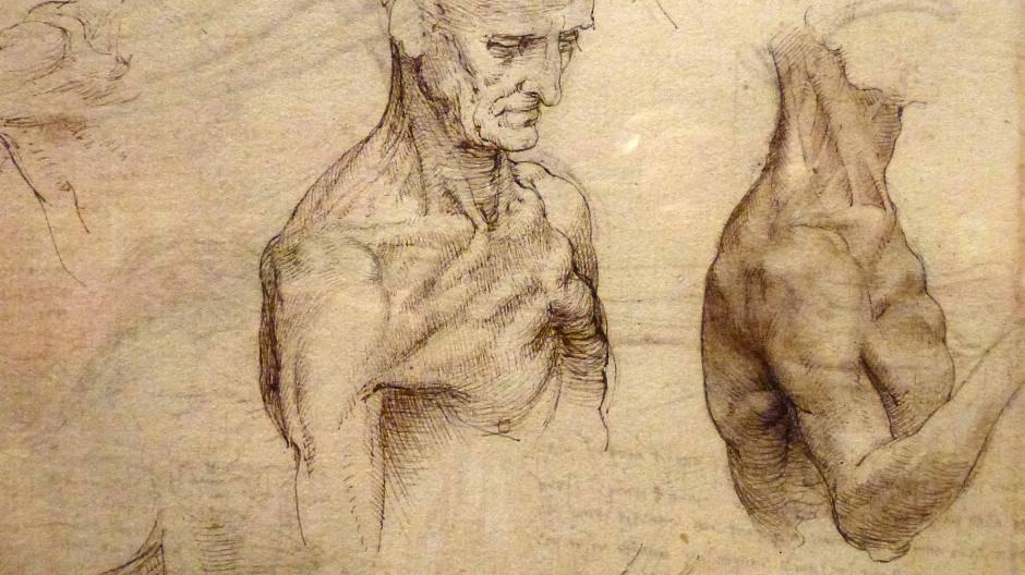 Künstler oder Wissenschaftler?: Da Vinci machte Körper zur Kunst
