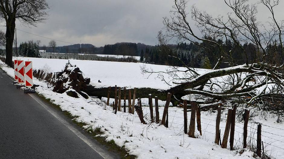 Remscheid Beim Sturm Wird Ein Lkw Vom Baum Umgeworfen