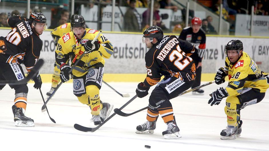 Eishockey Pinguine