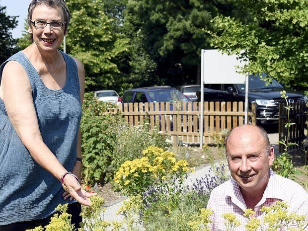 Ordinaire Erkrath : Heilpflanzen Aus Dem Apotheken Garten