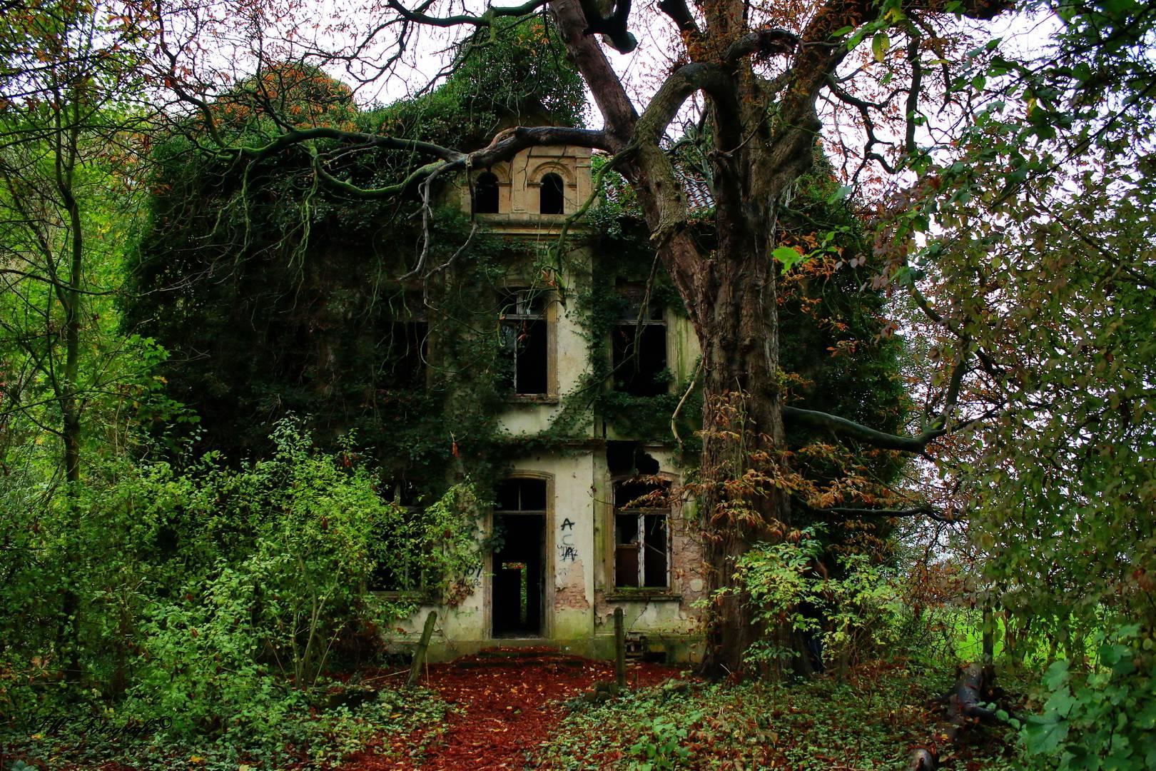 Lost Places Bilder