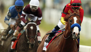 Justify galoppiert zur Triple Crown