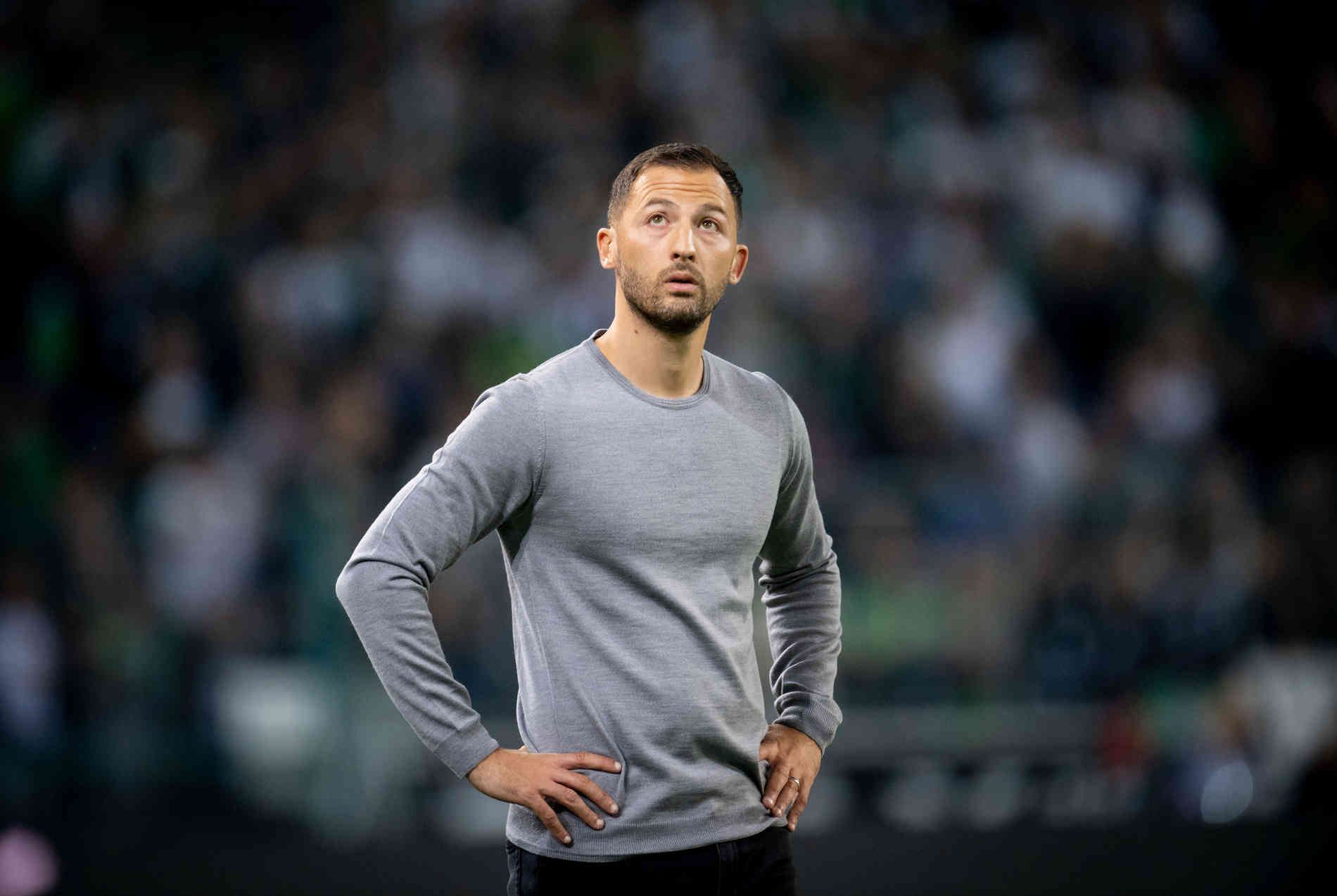 Domenico Tedesco Schalke