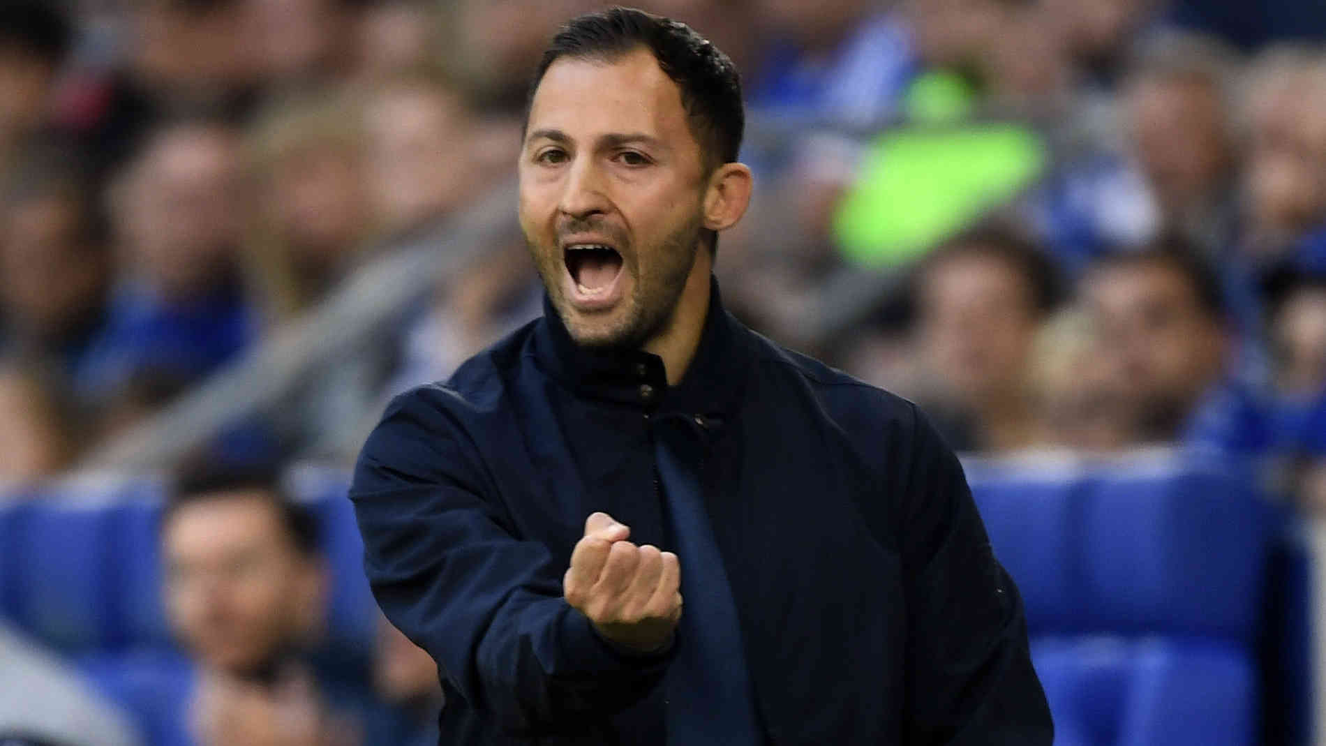 Trainer Von Schalke