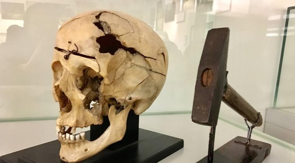 Dating-Techniken für Fossilien