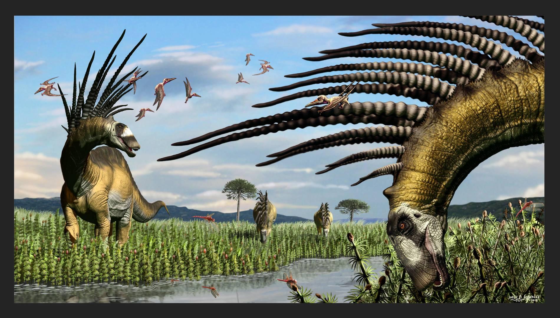 Bajadasaurus Pronuspinax Wissenschaftler Entdecken Dinosaurier Mit