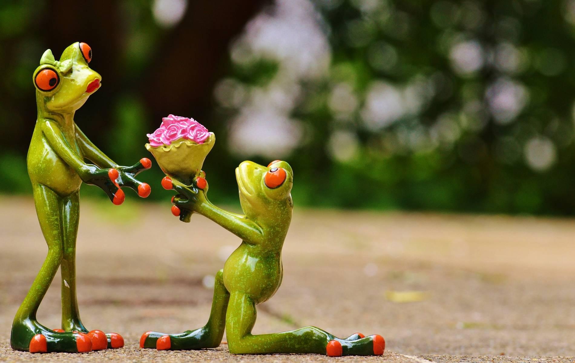 Valentinstag 10 Spruche Die Sie Ihren Liebsten Nicht Sagen Sollten
