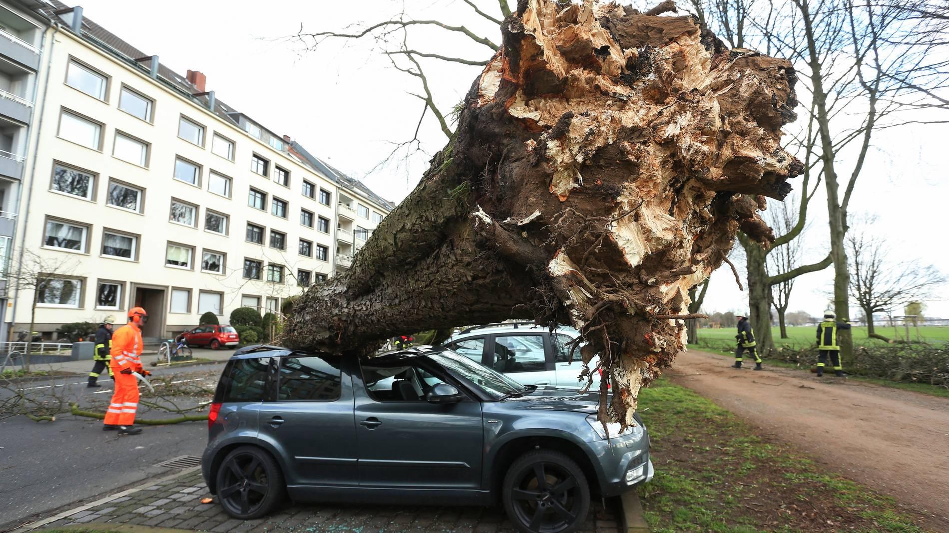 Происшествия: В Германии бушует ураган Эберхард: хаос на дорогах и первые жертвы рис 4