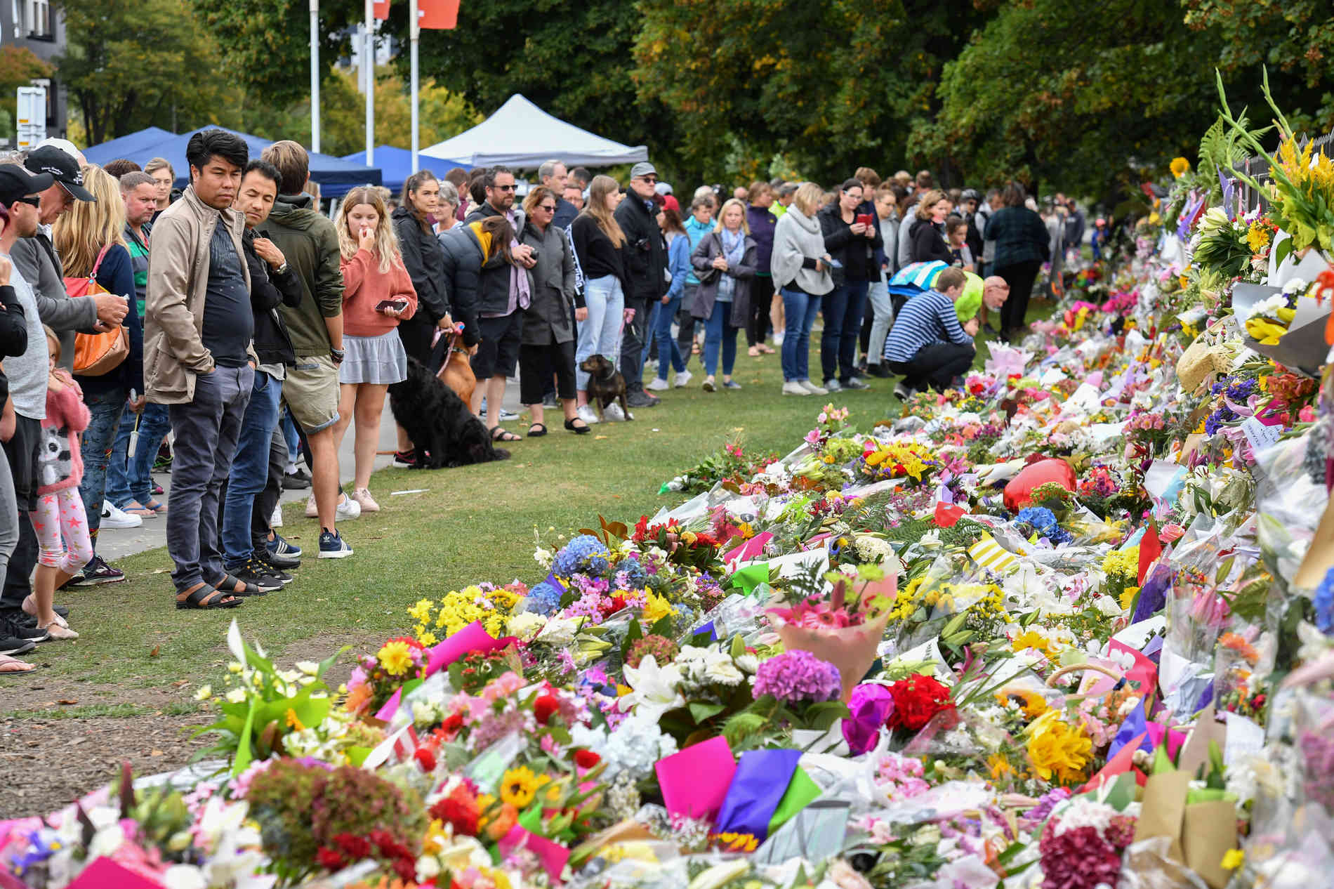 Attentat In Christchurch: Neuseeland Trauert Um 50 Todesopfer