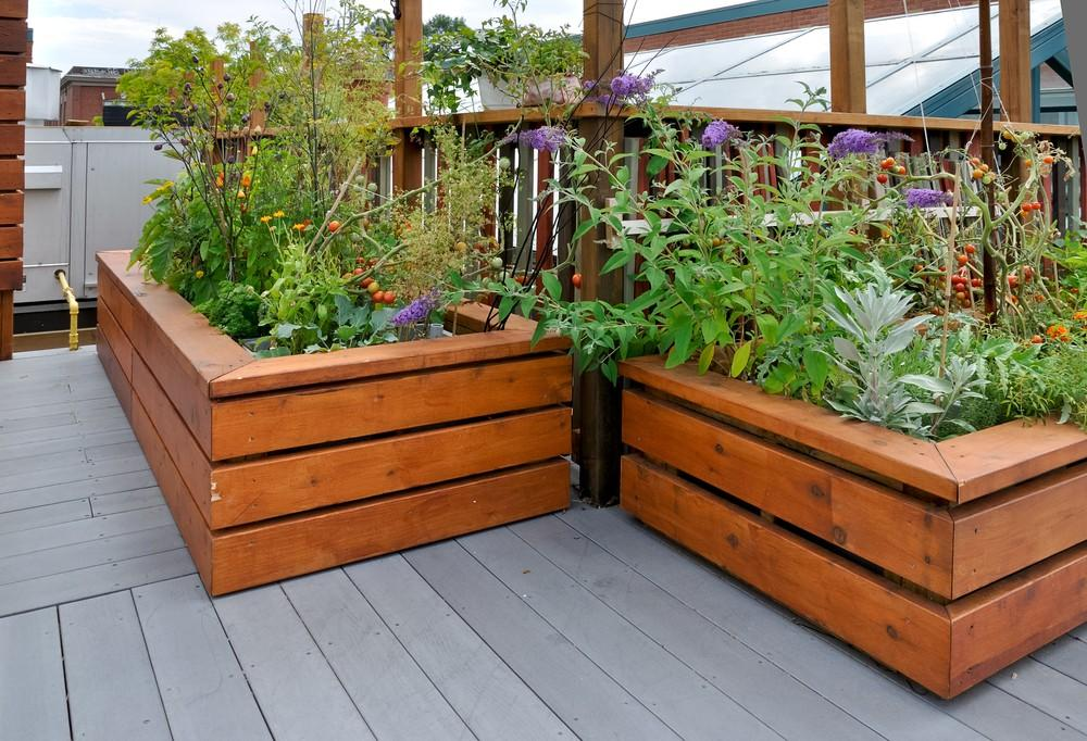 so baut man gem se auf dem balkon an. Black Bedroom Furniture Sets. Home Design Ideas