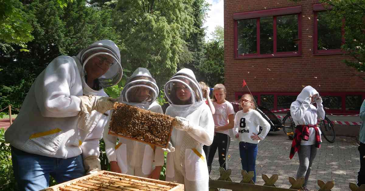 Theresienschule Hilden hält Bienen