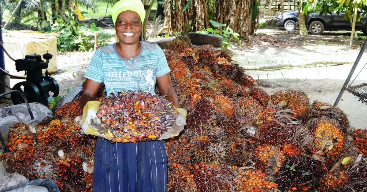 Düsseldorf: Henkel will Palmöl künftig nur noch aus nachhaltiger Produktion
