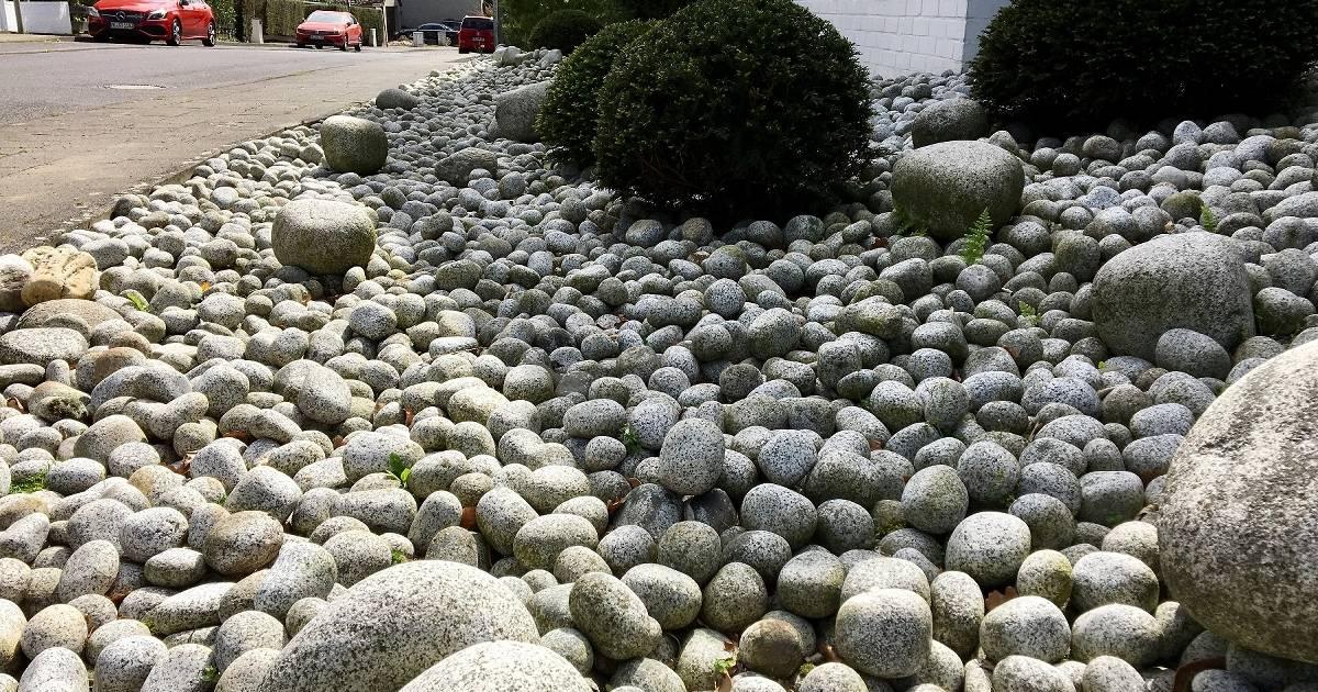 Ausschuss ringt um Verbot von Steingärten