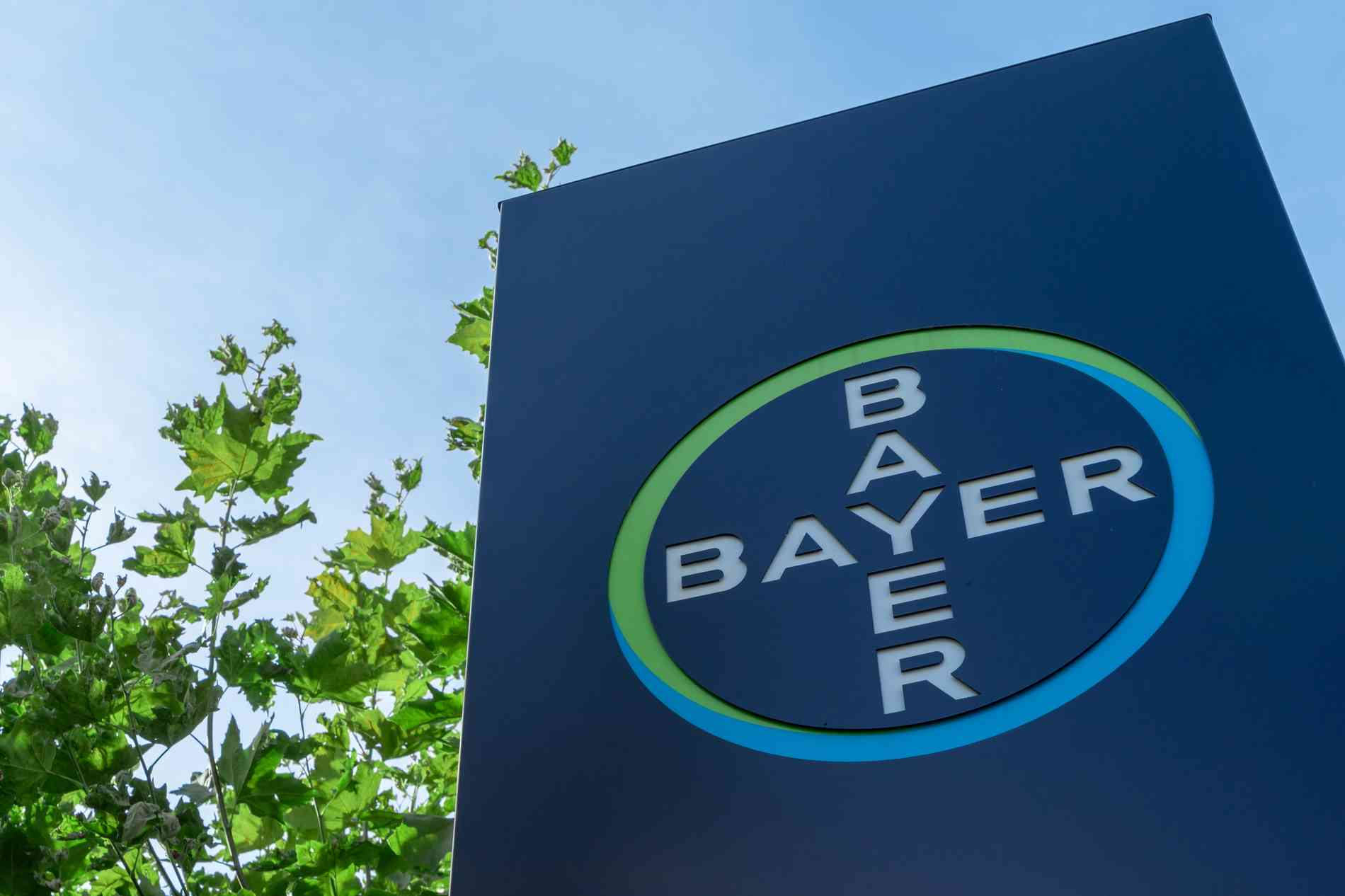 Bayer: Glyphosat-Strafe deutlich gesenkt