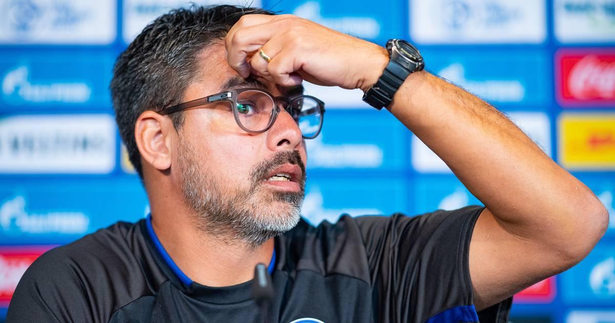 Schalke Trainer