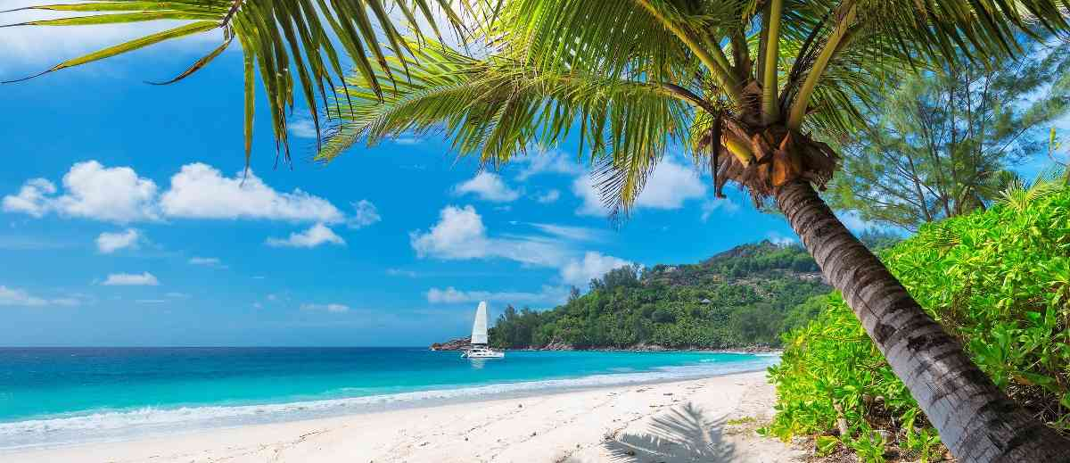 Abenteuerurlaub im Outback Jamaikas