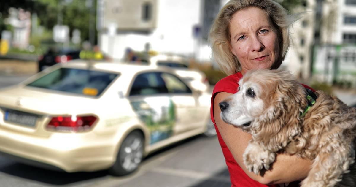 Taxifahrer verwehren einer Frau mit Hund den Transport in Hilden