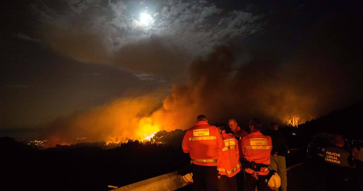Gran Canaria: Waldbrand auf Ferieninsel - mehrere Orte evakuiert