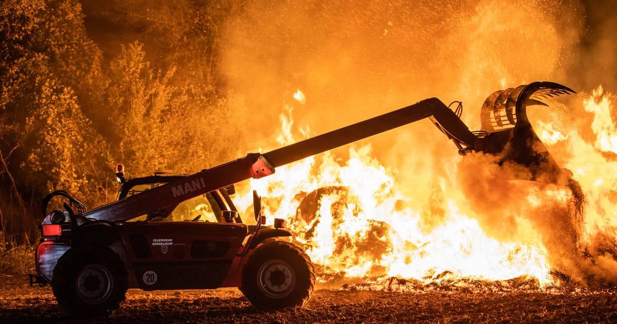 Brand in Düsseldorf: 250 Strohballen brennen in Lohausen - Feuerwehr im Einsatz