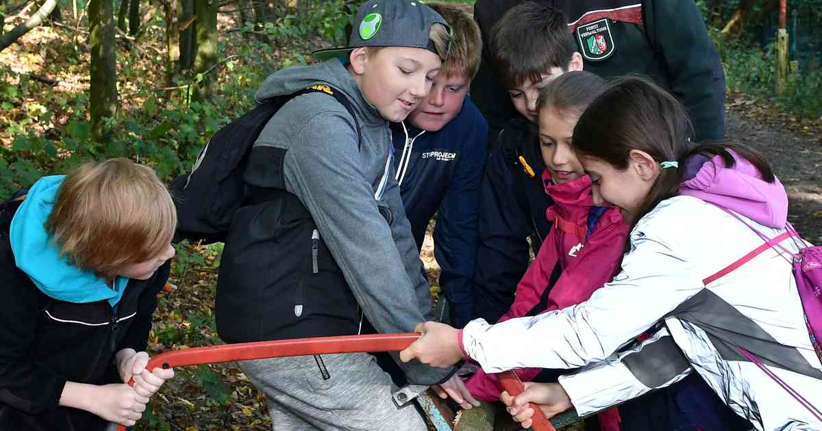 Hückeswagener Grundschüler erleben den Wald mit allen Sinnen