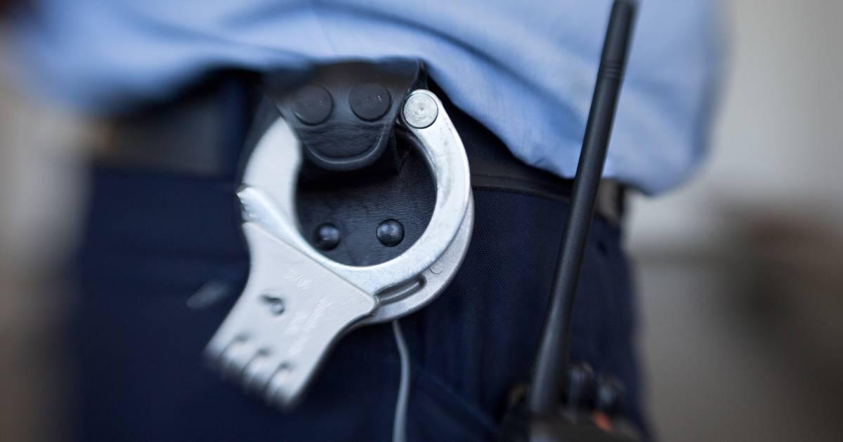 Polizei in Utrecht verhaftet nach Ladendiebstahl einen Vogel