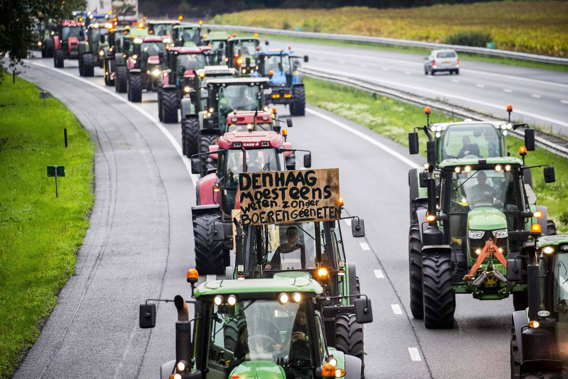 Verkehrschaos: Niederländische Bauen legen Den Haag lahm - News - Panorama
