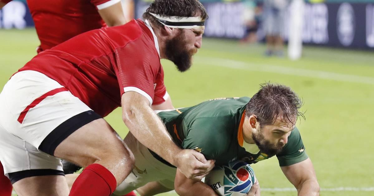 Südafrika erreicht mit weiterem Kantersieg Viertelfinale der Rugby-WM