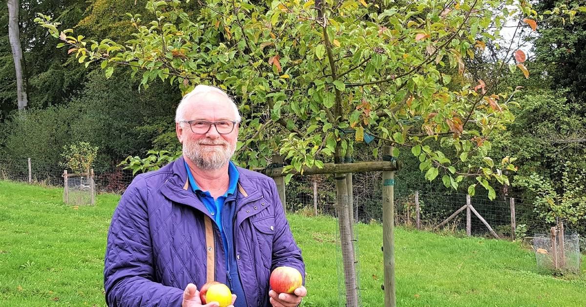 Apfelernte fällt sehr mager aus