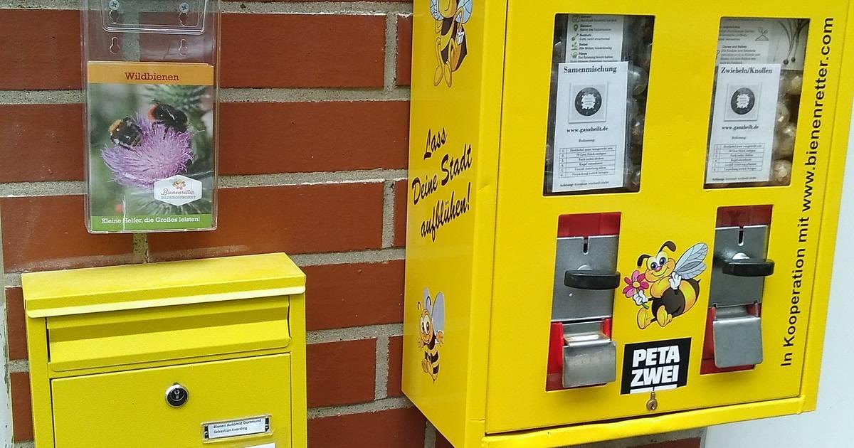 Dortmund: Bienenrettung aus Kaugummi-Automaten