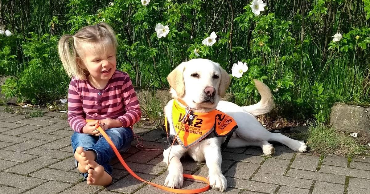 Pflegekinder brauchen Unterstützung: Ein Assistenzhund für Moritz und Lia