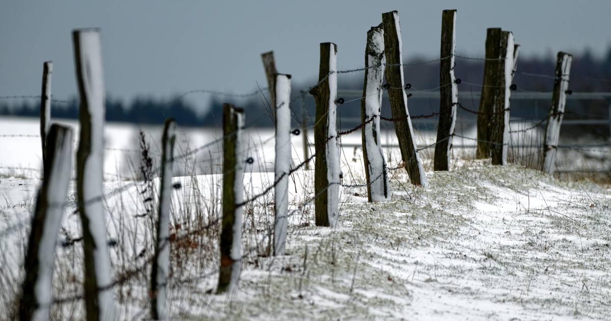 NRW-Wetter: Wind und Frost, im Bergland auch Schnee möglich