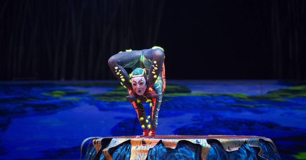 """""""Cirque du Soleil"""" in Düsseldorf: Die Schlangenfrau ist wieder dabei"""