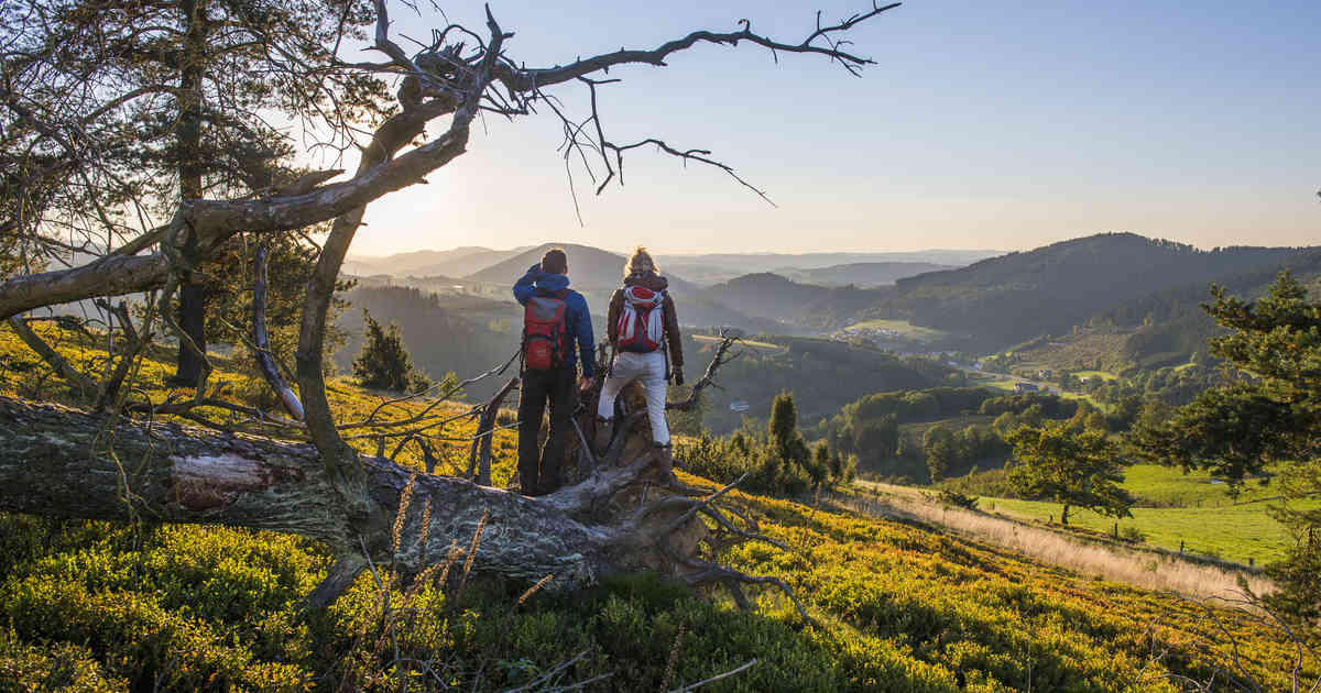 Wandern im Sauerland: Erleben Sie die schönsten Landschaften