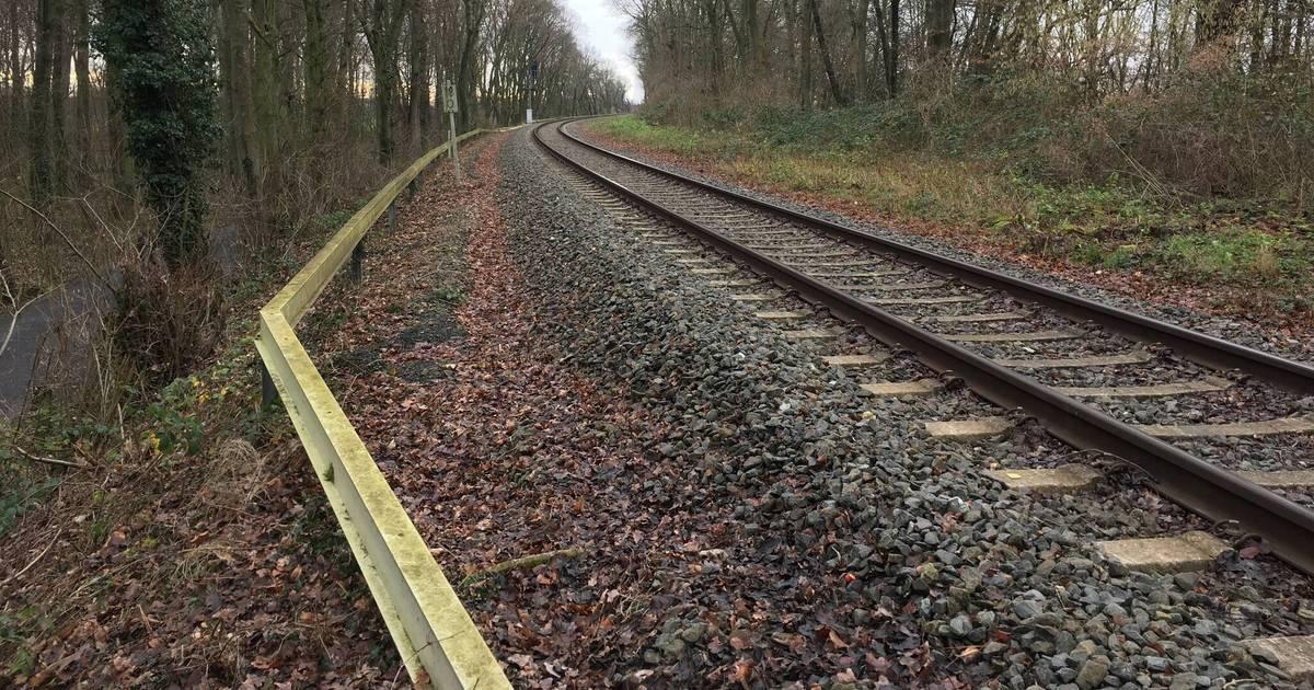 Duisburg: Städte wollen die Wiederbelebung der Walsum-Bahn
