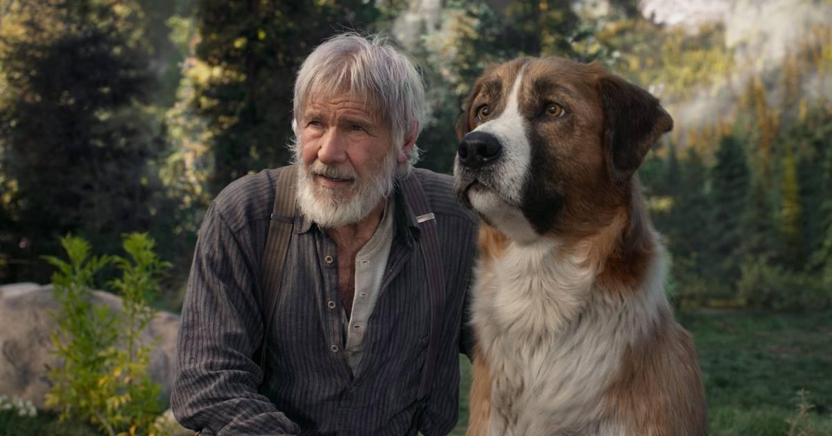Tierfilme Heute
