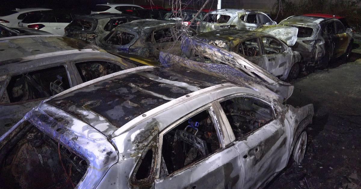 Feuerwehr am Höherweg im Einsatz: Sechs Autos auf Gelände eines Autohauses abgebrannt