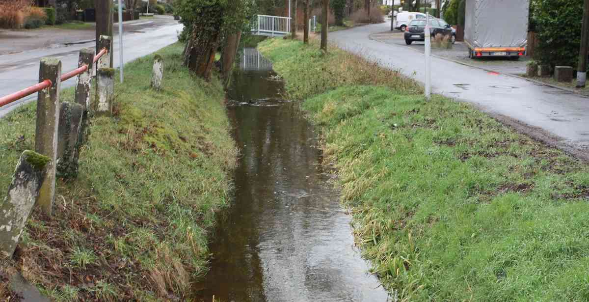 Duisburger Süden: Der Rahmer Bach fließt wieder