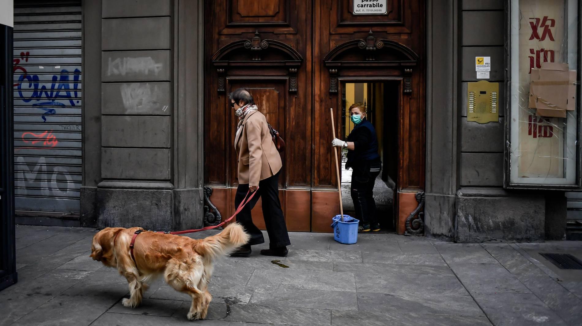 Coronavirus Konnen Sich Hund Und Katze Anstecken Haustier Fragen
