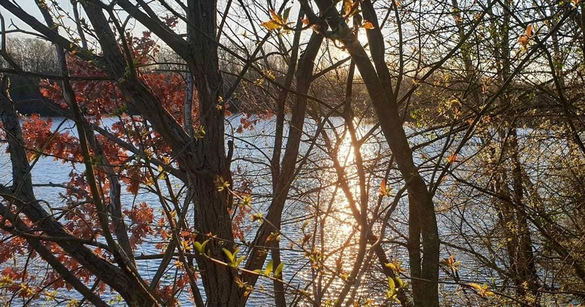 Corona-Ticker: 31 Erkrankte in Langenfeld und 19 in Monheim