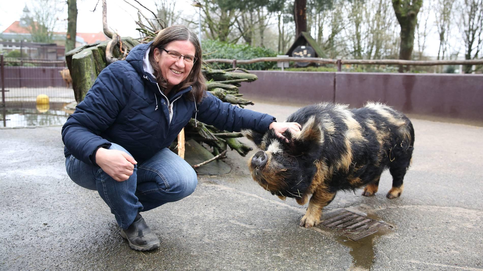 Alle Jahre Wieder Schlachten Wir Ein Schwein