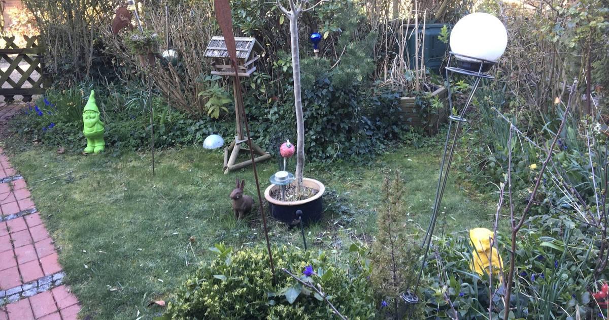 Glückgefühl zu Hause: Leser-Aktion: Zeigen Sie uns Ihren Garten oder Balkon