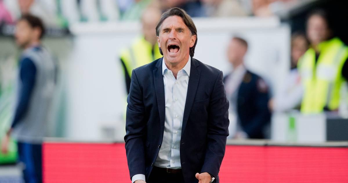 Klub bestätigt: Labbadia neuer Trainer bei Hertha BSC