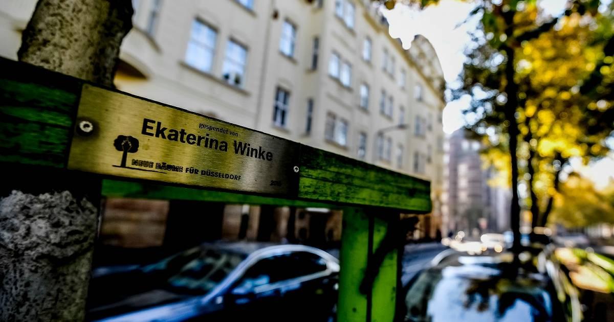 Kommunalwahl in Düsseldorf: So wollen die Parteien das Klima schützen