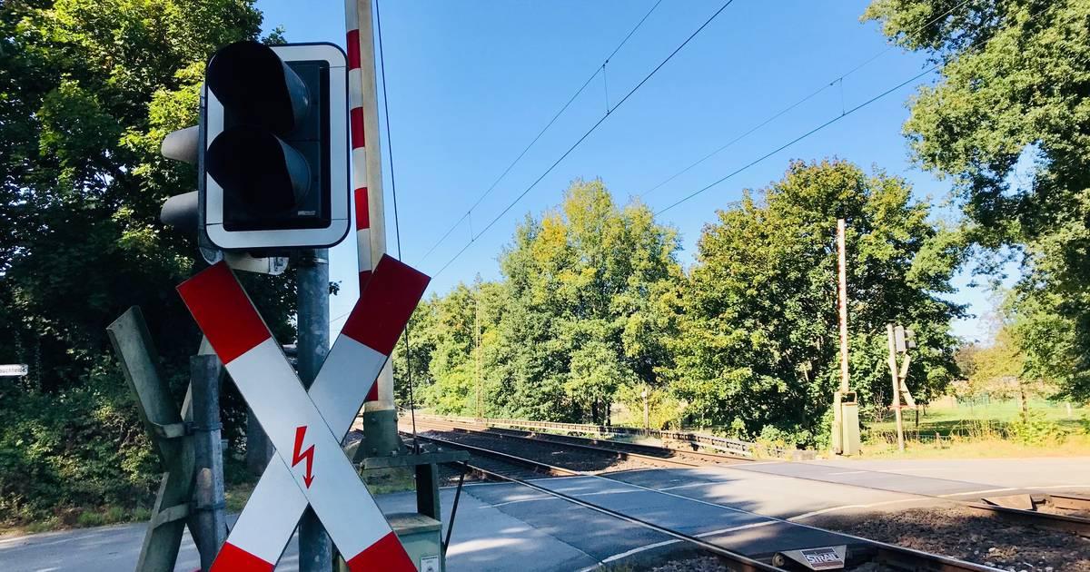 Zwischen Hamminkeln und Wesel: ICE rast in Schafherde auf Bahnübergang